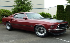 Picture mustang, Mustang, 1969, ford, muscle car, Ford, muscle car, mach 1
