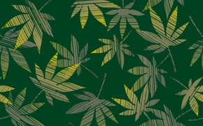 Picture leaves, green, hemp