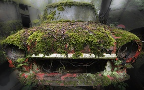 Picture machine, moss, scrap