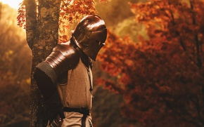 Wallpaper nature, metal, tree, armor, warrior, helmet, knight