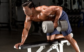 Wallpaper gym, bodybuilding, dumbbell, bodybuilder, back exercises