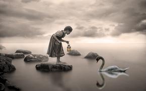 Wallpaper Swan, lake, girl
