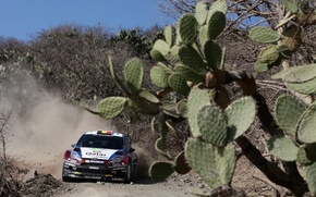 Picture ford, Mexico, rally, wrc, fiesta, 2013, T. Neuville