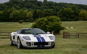 Picture Ford, Blue, White, Stripes