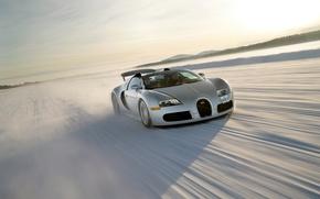 Picture Roadster, 2008, Bugatti, Veyron, Bugatti, Veyron, Grand Sport, US-spec