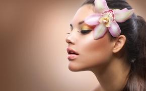 Picture flower, face, hair, brunette