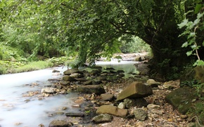 Picture river, stones, arch