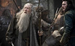 Picture Bart, The hobbit, Ian McKellen, Ian McKellen, Gandalf, Luke Evans, Luke Evans, The battle of …