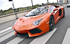 Picture road, speed, lamborghini, road, speed, orange, aventador, lp700-4, Lamborghini, aventador, crosswalk