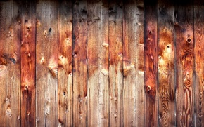 Picture background, Board, texture, Tree