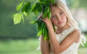 Picture look, sprig, angel, girl, Mary Schannen, Angel On Earth