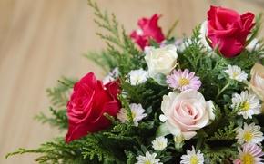 Picture roses, bouquet, petals, leaf