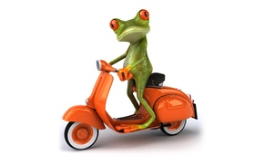 Picture transport, graphics, frog, moped, Free frog 3d