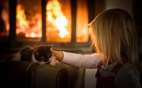 Picture cat, comfort, girl