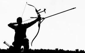 Picture silhouette, arrow, darter