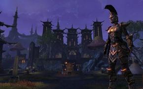 Picture the city, warrior, The Elder Scrolls Online, night