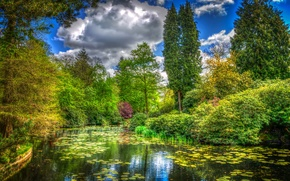 Picture greens, grass, clouds, trees, pond, Park, England, treatment, the bushes, Tatton Park
