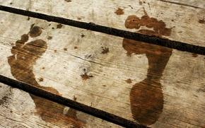 Picture traces, the bridge, wood