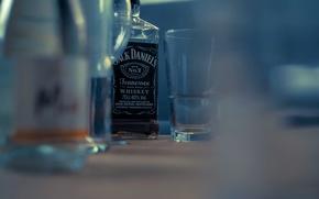 Wallpaper food, alcohol, drink