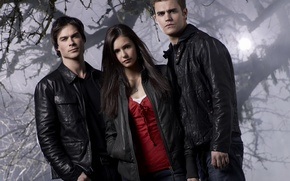 Wallpaper movie, cinema, the series, The Vampire Diaries, the vampire diaries