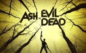 Picture forest, Ash, evil dead, Bruce Campbell, evil dead