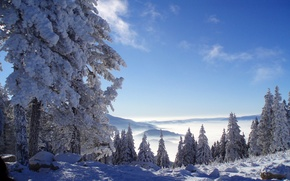 Picture winter, forest, snow, mountains, Nature