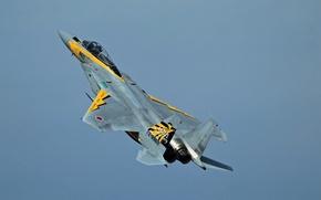 Wallpaper McDonnell Douglas, F-15, Eagle, fighter