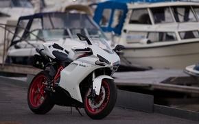Picture white, Moto, motorcycle, white, moto, motorcycle, ducati, sportbike, sportbike