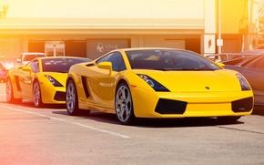Picture yellow, Lamborghini, Gallardo, yellow, Lamborghini, Gallardo