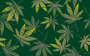Wallpaper leaves, background, Wallpaper