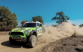 Picture Dust, Wheel, Green, Skid, Lights, Mini Cooper, Rally, Dakar, MINI, The front, Mini Cooper, X-raid