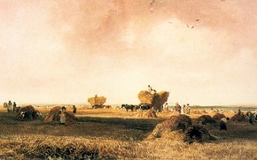 Picture field, the sky, birds, people, picture, hay, the harvest, who