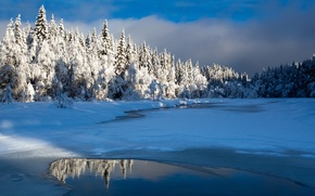 Wallpaper lake, snow, winter