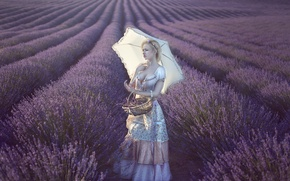 Picture field, girl, umbrella, mood, dress, basket, lavender, Vanessa Galway