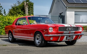 Picture Mustang, Ford, Red, White, Stripes