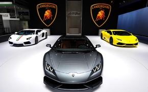 Picture Lamborghini, gallardo, tuning, lambo, aventador, murcelago, huracan