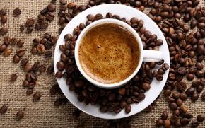 Wallpaper saucer, burlap, Cup, grain, coffee, foam