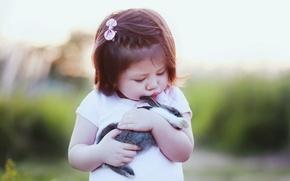 Picture rabbit, friendship, girl, friends