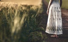 Picture field, girl, dress, ears