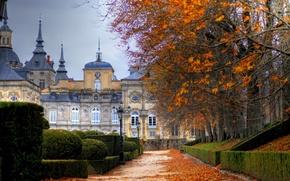 Picture city, cathedral, park, autumn, buildings