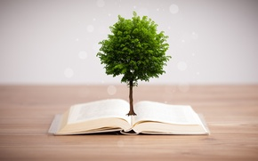 Picture tree, book, the subject