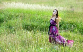Picture summer, girl, dress, meadow