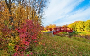 Picture autumn, the sky, leaves, clouds, trees, Park, stream, the bridge, the crimson