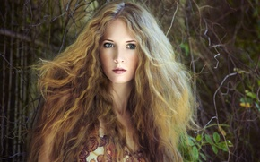 Picture look, leaves, girl, branches, blonde, curls