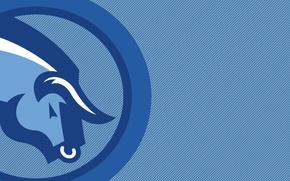 Picture blue, strip, blue, color, horns, bull