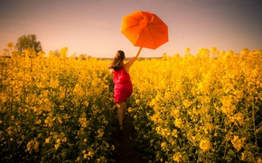 Picture girl, umbrella, field of gold
