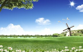 Picture windmill, pigeons, Lawn