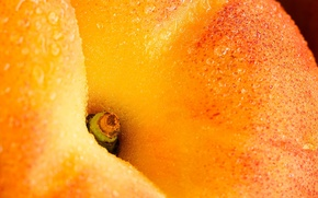 Picture Drops, Peach, Ripe