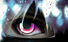 Picture face, eyes, anime, art, guy, bangs, Tokyo ghoul, tokyo ghoul, Ken kanek