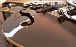 Picture macro, guitar, strings
